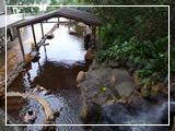 [写真]金山温泉